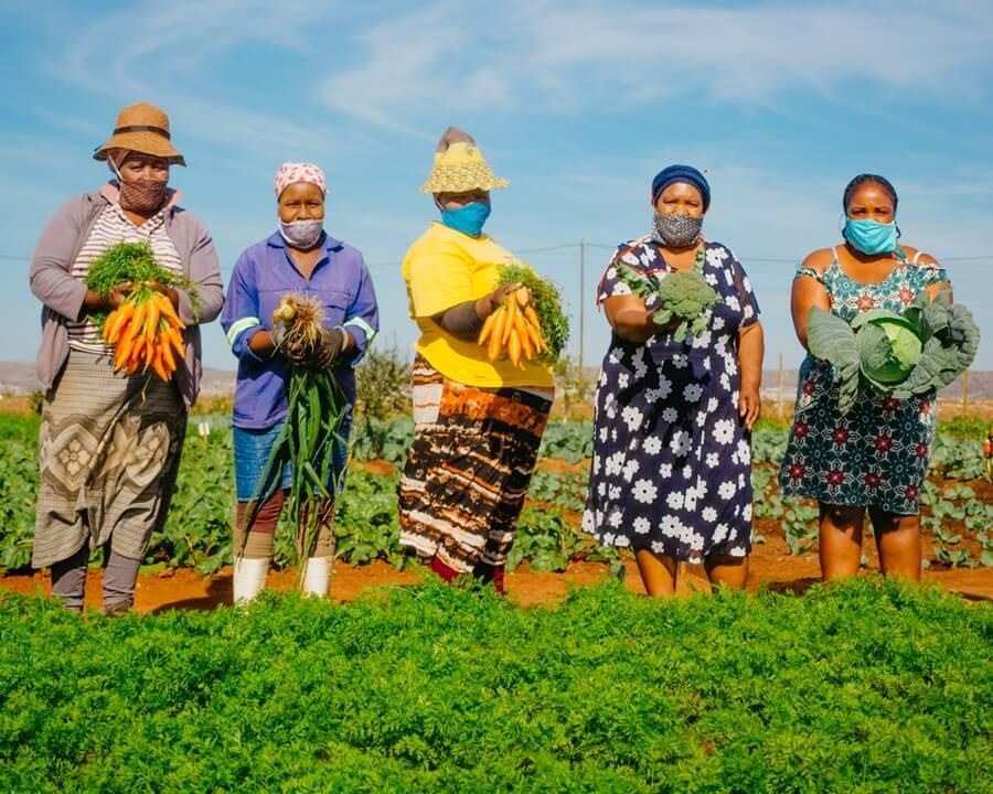 Workers holding vegetables at community vegetable garden in Joe Slovo