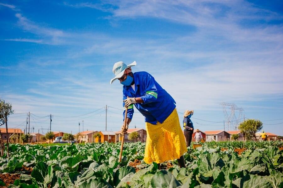 Worker digging Joe Slovo vegetable garden