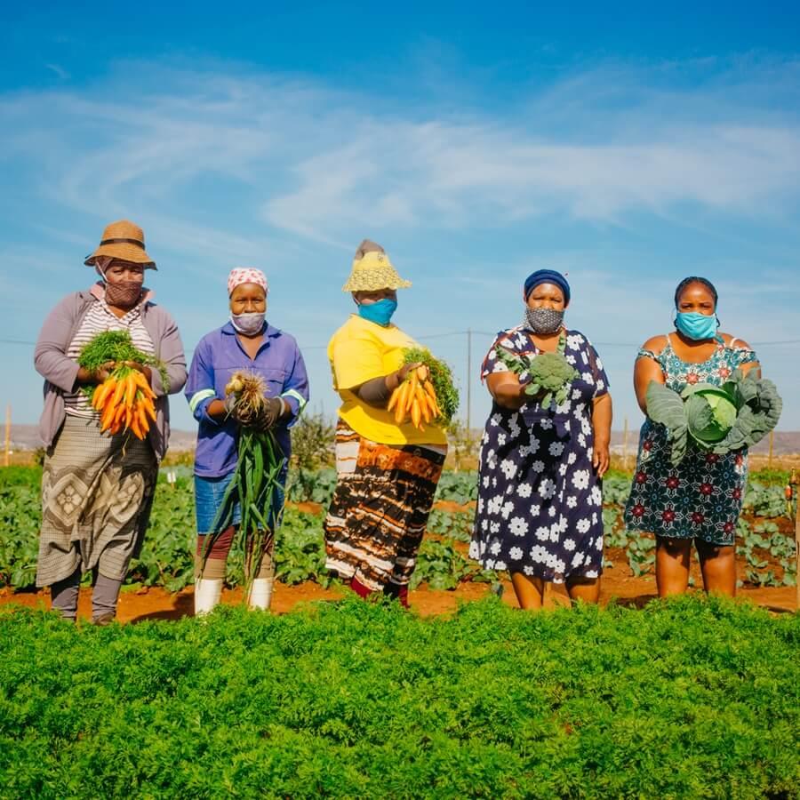 Workers holding vegetables at community vegetable garden Joe Slovo PE